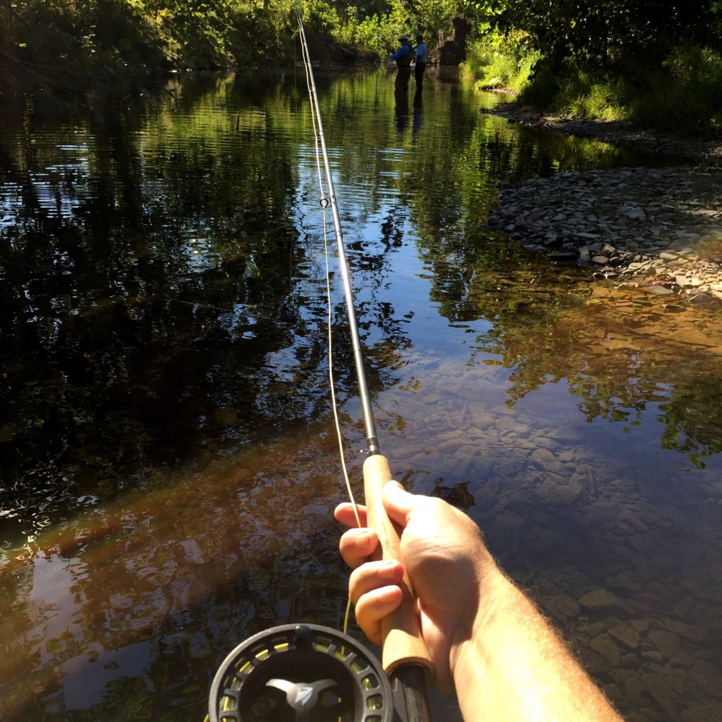 Fly Fishing Lesson