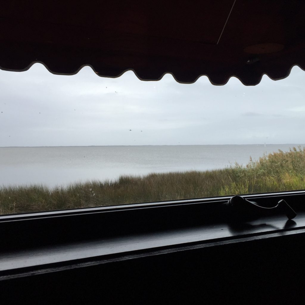 rain during lunch on our way through Duck